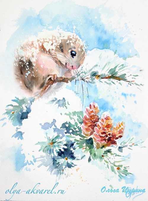 Цурина Ольга акварель картины Момонга (белочка) шишки, снег, зима