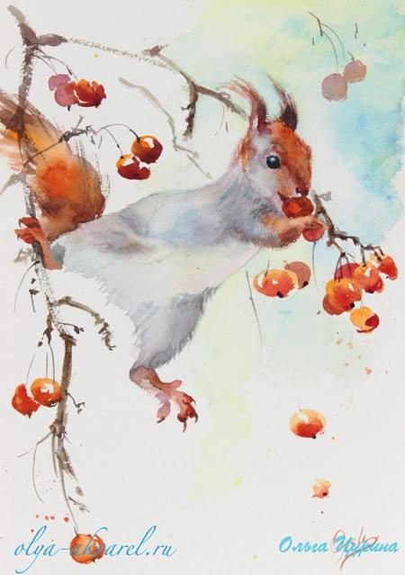 Цурина Ольга картины акварелью Белка, зима ягоды художник