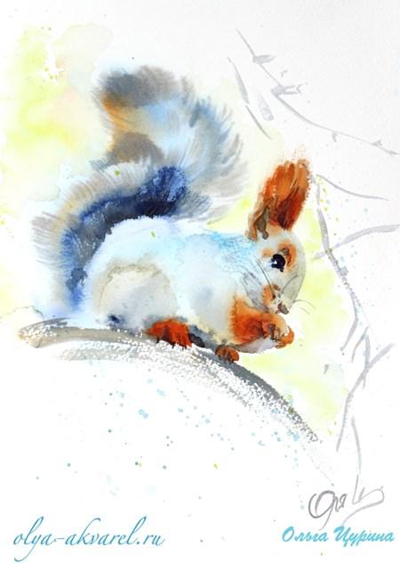Цурина Ольга картины акварелью белка зима художник анималист