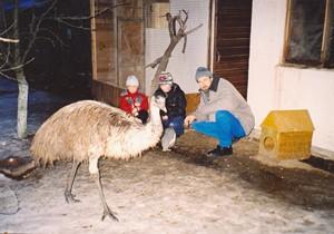 Австралийский страусенок Кузя