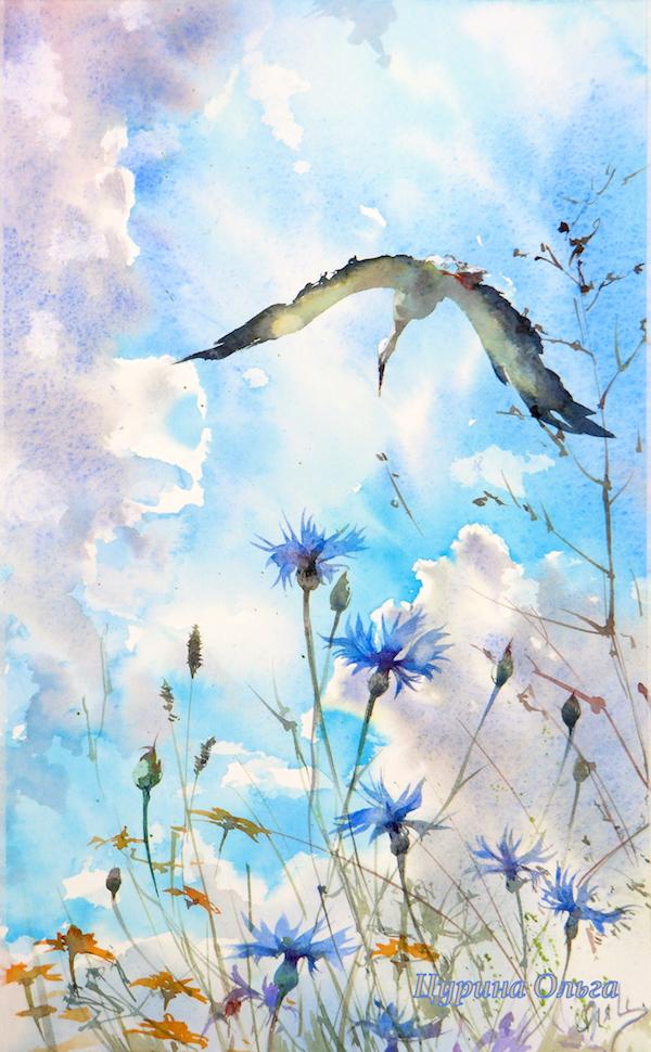 акварель полевые цветы живопись ольга цурина watercolorflower
