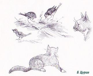 Цурин Борис. Кошки на охоте, графика, рисунок ручкой