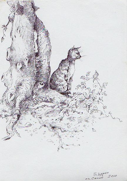 Цурин Борис. Кошка на охоте, графика, рисунок ручкой