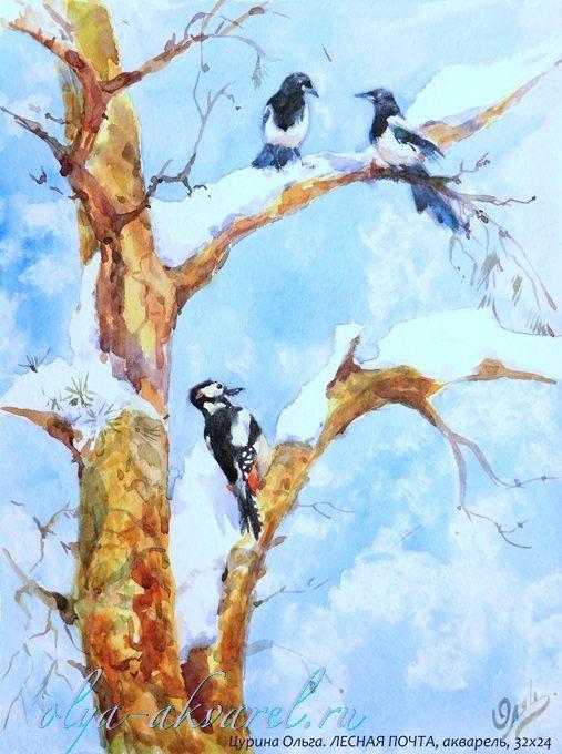 птицы в рисунках акварелью