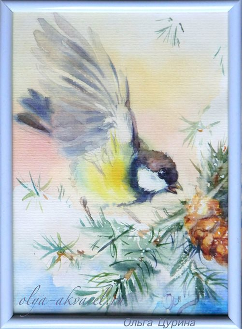 Синичка на ветке ели и шишка, картина акварелью
