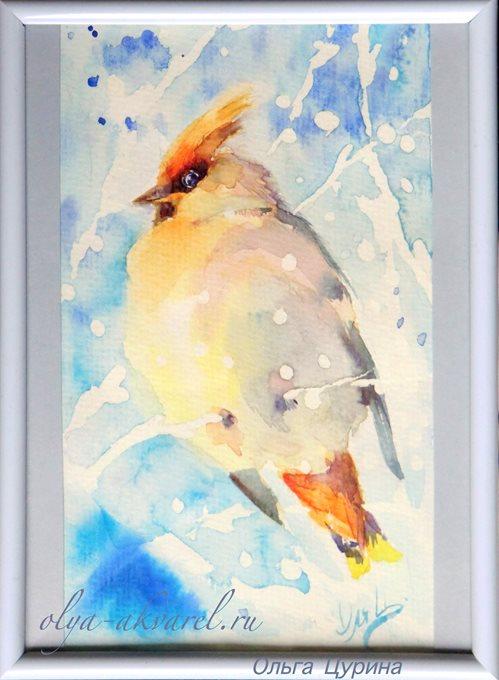 СВИРИСТЕЛЬ  (Пушистый снежок, мягкий мороз и нежная свиристель) акварельный рисунок, 18х13
